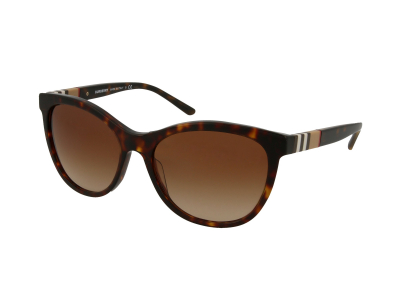 Burberry BE4199 300213