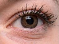 TopVue Color Daily - с диоптър (10лещи) - Brown on grey eye