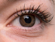 TopVue Color Daily - без диоптър (10лещи) - Brown on grey eye